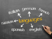 What is the Best Language to Learn?